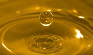 Hemp oil as a base for hemp plastic