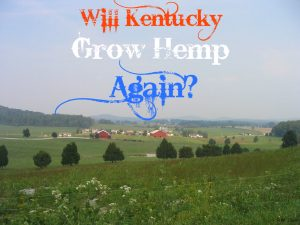 Will Kentucky grow hemp again