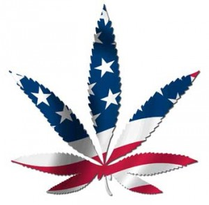Is there a hemp republican?