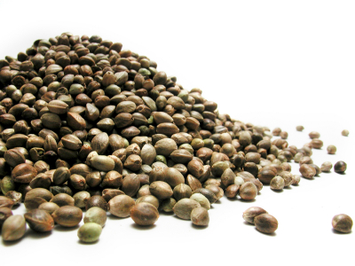 Austin360: Food Matters – Hemp seeds can help you