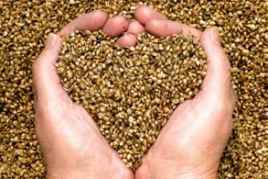 Agricultural Hemp provides a solution