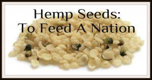 Hemp Seeds - To feed a nation
