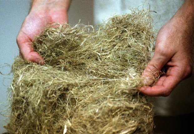 Hemp fiber can be made into a number of products. But growing it is illegal under federal law.