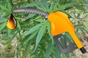 Hanfbiodiesel